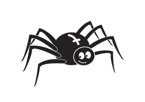 kleine zwarte spinnetjes
