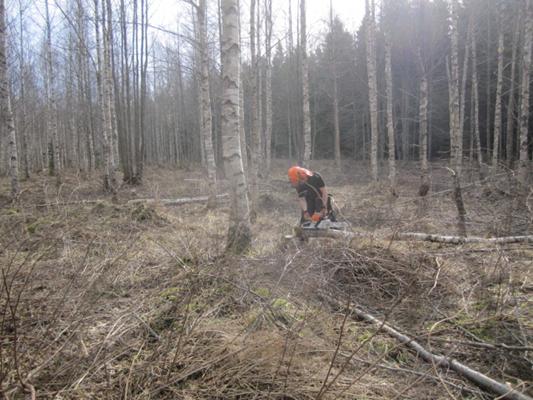 welke gereedschappen gebruikten de bos jagers