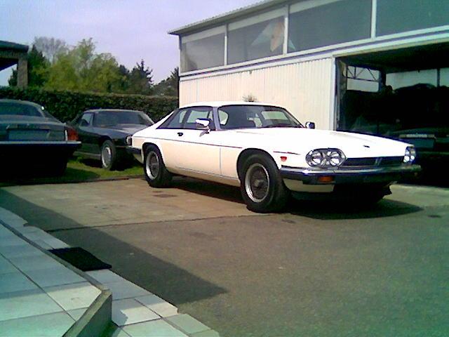the jaguar farm belgium cars and parts