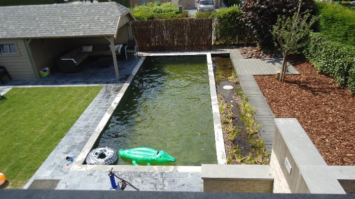 Zwemvijver - Klein zwembad in de kleine tuin ...