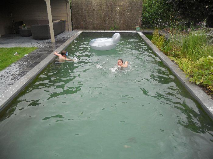 Zwemvijver for Vierkante vijver maken